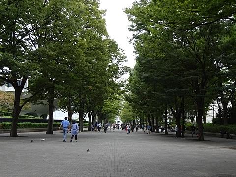 Shibuya_h280930_01a.jpg
