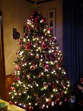 Xmas_tree_h241124_02.jpg