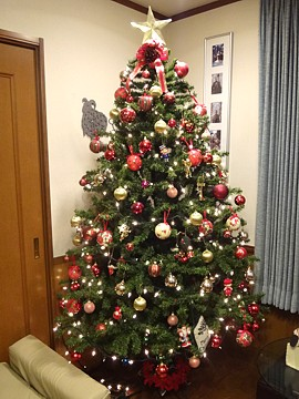 Xmas_tree_h241124_03.jpg
