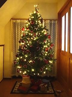 Xmas_tree_h281206_03.jpg