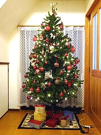 Xmas_tree_h281206_04.jpg