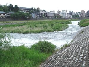 kanazawa_11_24_s.jpg
