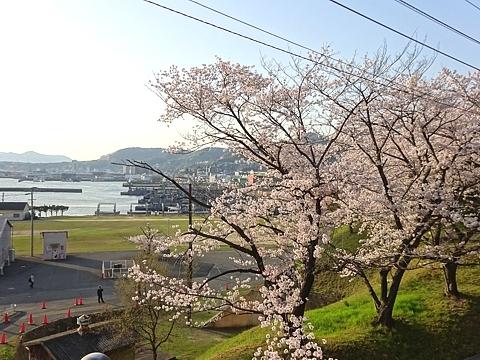kanoukai_h300330_01.JPG