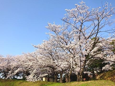 kanoukai_h300330_02.JPG
