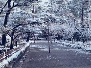 kenrokuen_1970_03_s.jpg