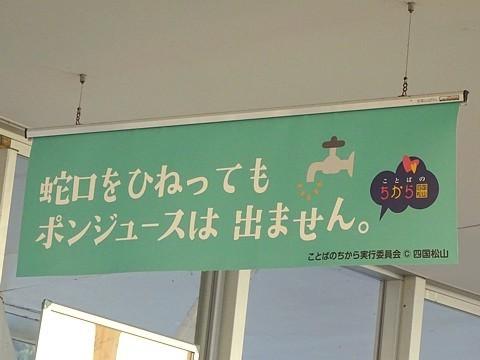 matsuyama_h291105_05.JPG