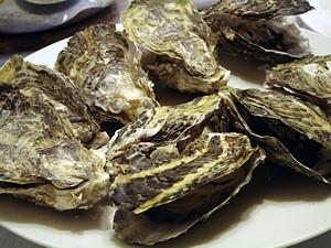 oyster_h2301_06_s.jpg