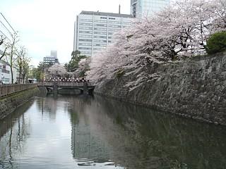 shizuoka_h200405_1.jpg