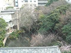 shizuoka_h2303_03a.jpg