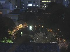 shizuoka_h2303_03b.jpg