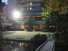 shizuoka_h2303_06b.jpg