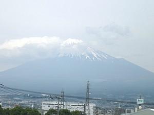 shizuoka_h240519_08.jpg