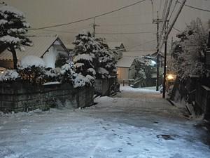 yuki_h2302_03.jpg